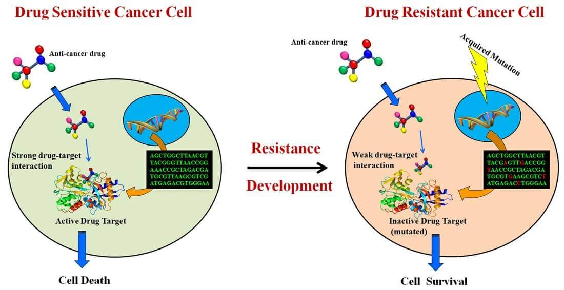 Resistance To Anticancer Drugs
