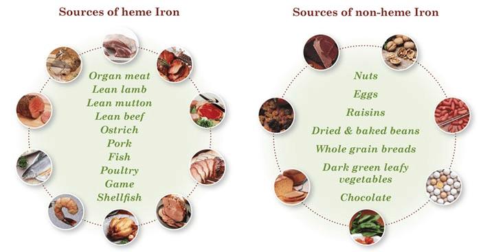 Heme Vs Non Heme Iron